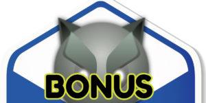 Bonus Within a Bonus